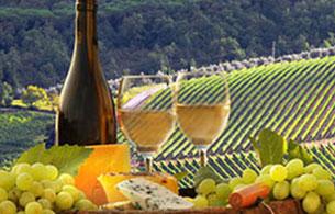 Vianello Limousine Service Prosecco wine tour