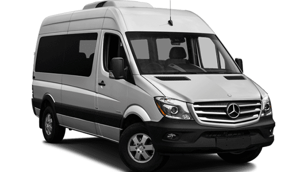 Vianello Limo Service Mercedes Sprinter Kombi